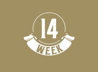 Les news de la semaine 14…