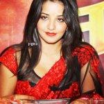 monalisa actress bhojpuri film
