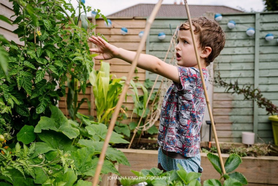 Boy showing the vegetables growing in his garden