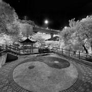 20110706順緻街公園