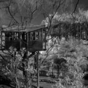 2004-02-17 林村