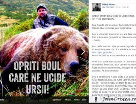 Ursul brun din România se află în pericol?