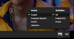 subtitrari valabile netflix