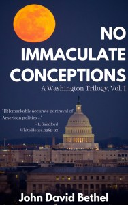 No Immaculate Conceptions book cover