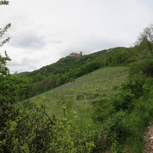 39.Castle on hill