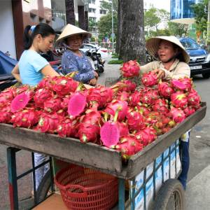 72. Dragon Fruit for Sale