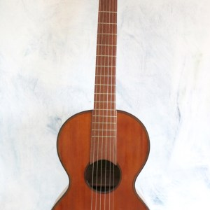 Guitar Stauffer 1