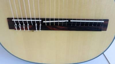 harp-guitar-ukraine-3