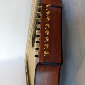 harp-guitar-ukraine-5