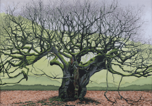 Painting of The Allerton Oak, Calderstones Park, Liverpool