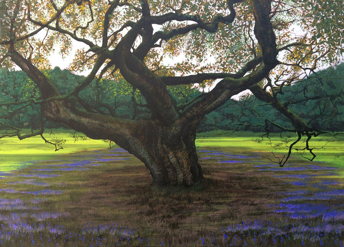 Painting of The Allerton Oak