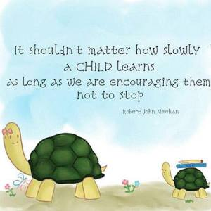 Robert John Meehan quote about children learning slowly