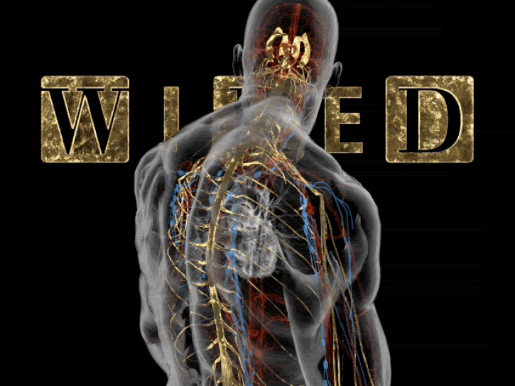 wired_cover