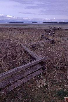 Fence at Rathtrevor
