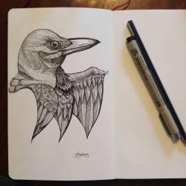 Inktober 18/31 Continuing Crow studies