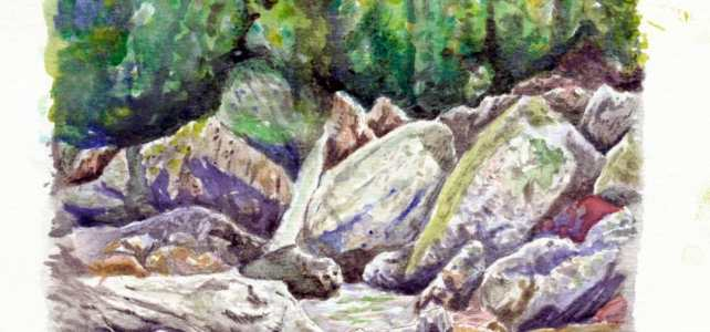 Thinking about painting more rocks in my future. This is skinny dip falls from a couple years back