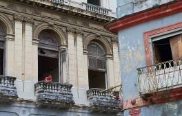 havana window gazing color