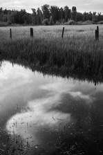 elk river valley mirror