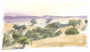 oaks 1e
