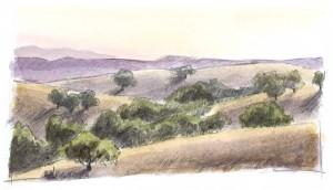 oaks 1f