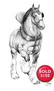 shire-horseSold