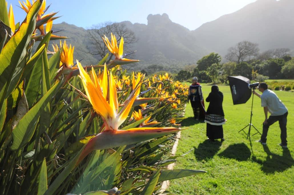 An interesting random photoshoot at Kirstenbosch National Botanical Garden