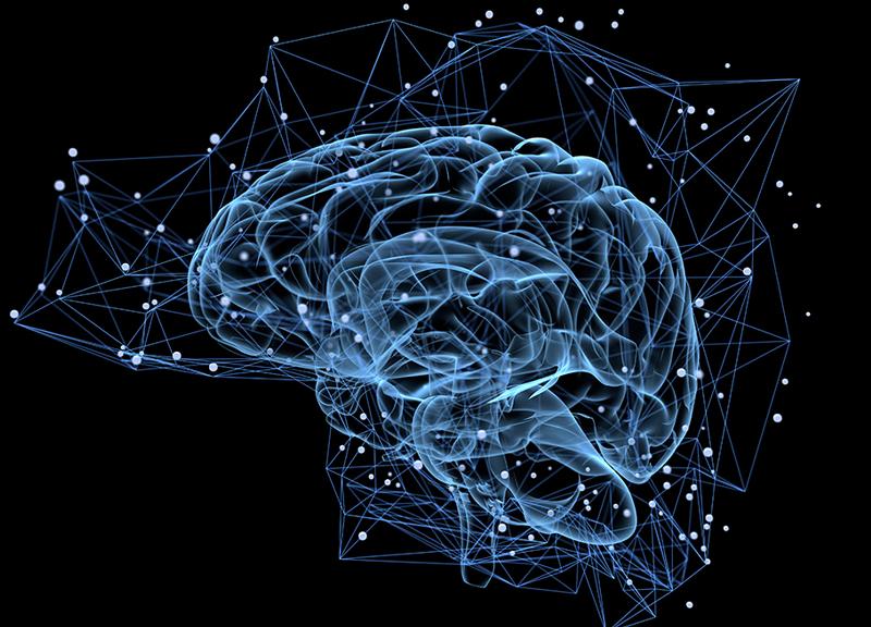 HealthGems No. 2 | Neuroplasticity