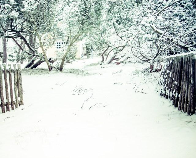 Vinter.. igen-4