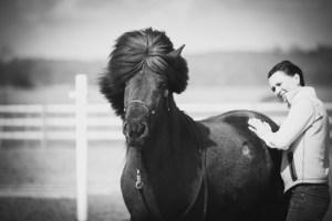 svart vitt foto på häst i halmstad
