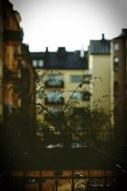 Fotografering av innergård i Stockholm