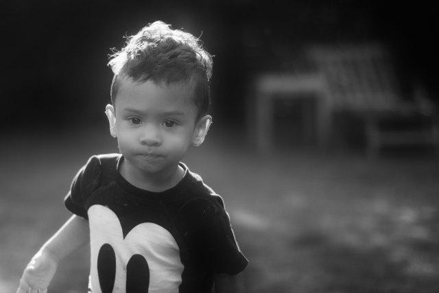 barnfotograf falkenberg
