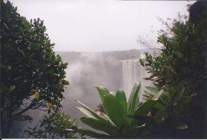 Kaietur with flora 2