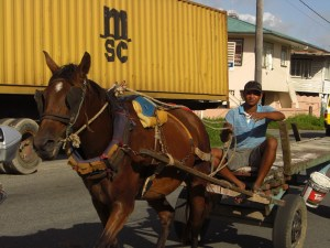 Guyana modern transport-1
