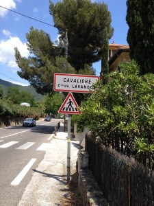 Yes, Cavalière1