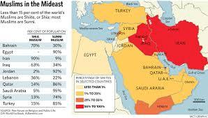 Sunni-Shiite divide