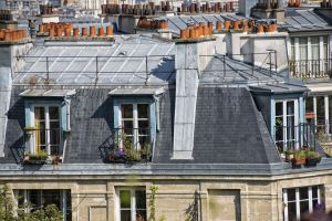 paris roofs and cityview landscape