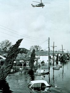 flooded-betsy