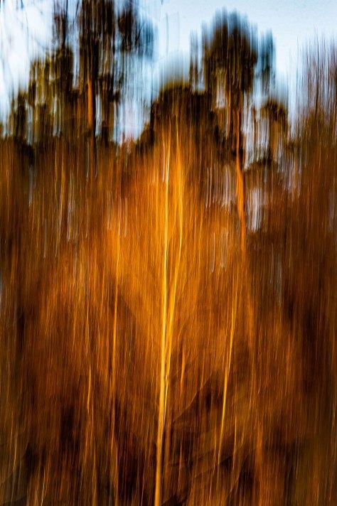Sunset at Pigeon Hill Lisa M. Zunzanyika
