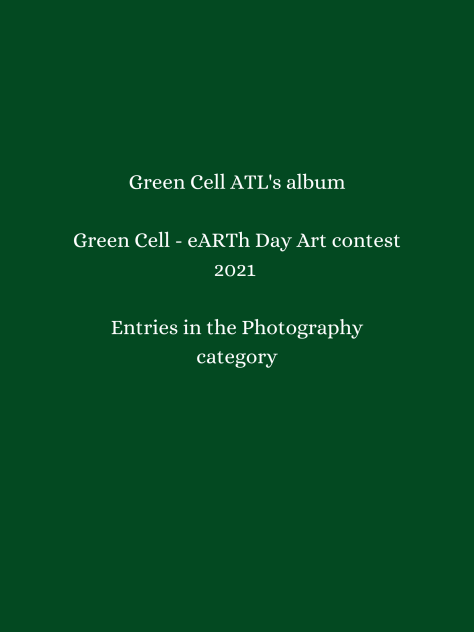 Click to view all entries