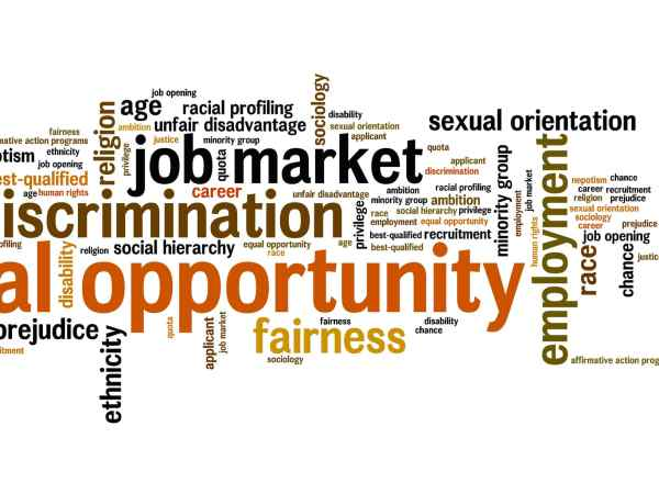 Title VII Employment Discrimination Law