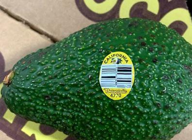 "Image of ""bravocado"" sticker placed on recalled avocados."