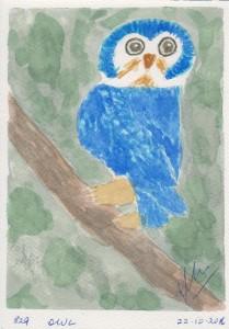829 OWL
