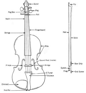 Violin Basics: Choosing and caring for violins | Johnson String
