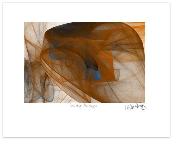 Shady Adagio - John Steins