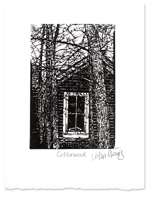 Cottonwood ~ wood Engraving