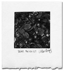 bear berries wood engraving