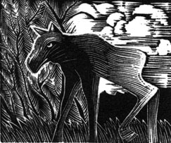 baby moose wood engraving