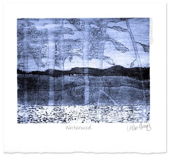Winterwood-etching-intaglio-fine-art-print-winter-scene