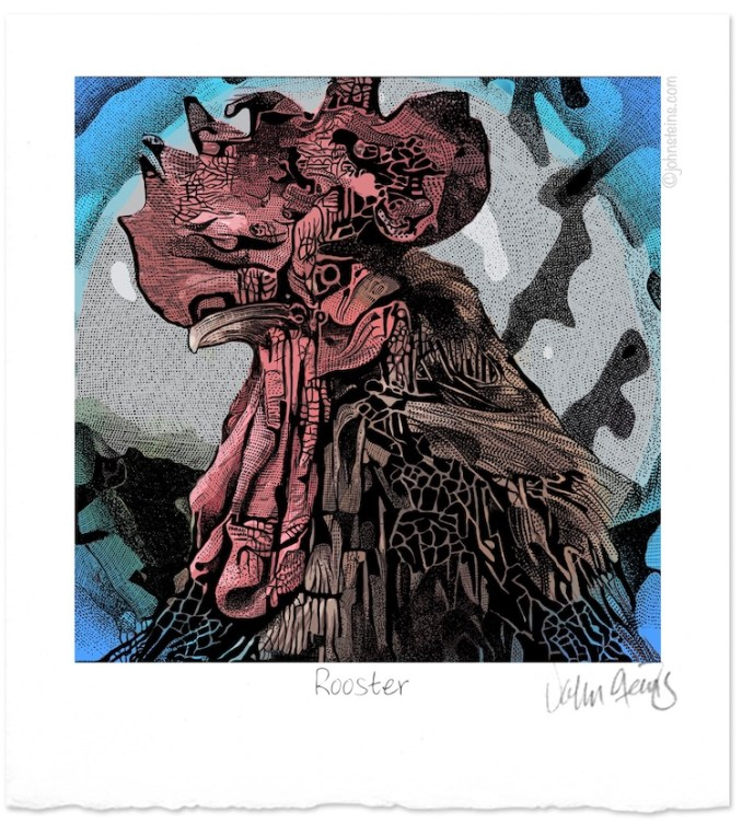 """""""Rooster"""" Stylus drawing © John Steins"""