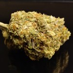 New Batch! PINK CHAMPAGNE - Special Price $135 oz!